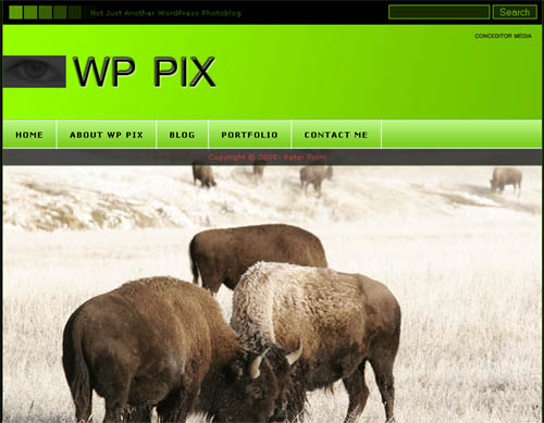 WP Pix Theme