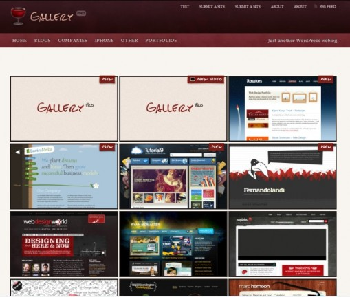 Gallery Pro 2-for-1 Theme