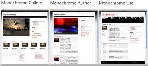 Monochrome WordPress themes