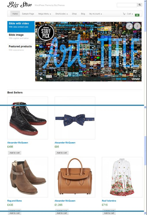 BizzThemes Bizz Store eCommerce WordPress Theme