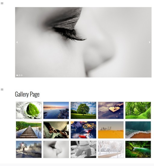 RichWP Gallery Responsive Theme For WordPress