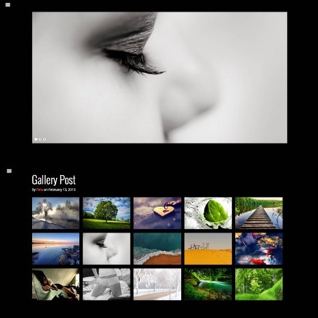 RichWP Dark Gallery WordPress Theme