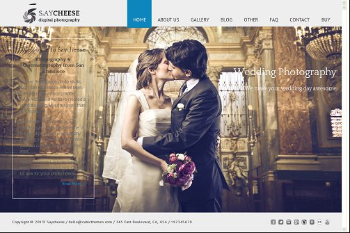 Sayscheese photography wordpress theme
