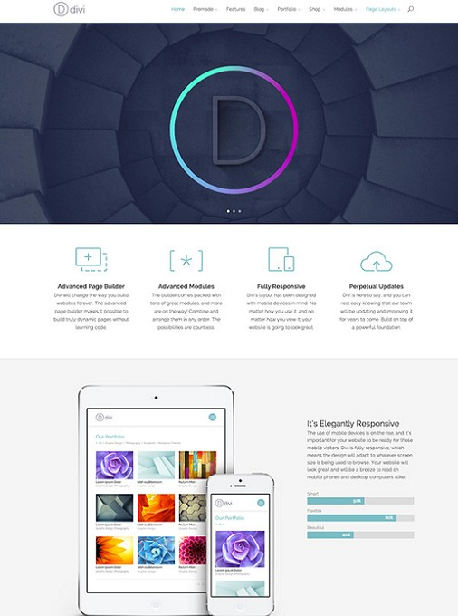 Elegant Themes Divi Theme - Flexible WordPress Theme Builder