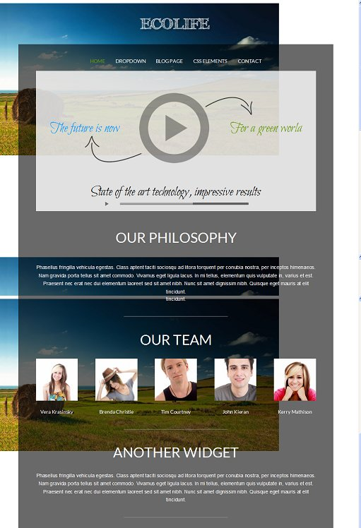 Viva Themes Ecolife Green / Non Profit WordPress Theme