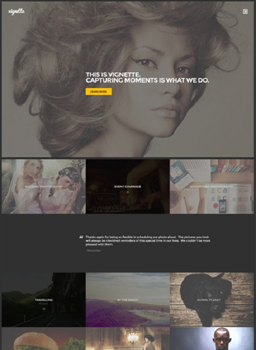 CSSIgniter Vignette WordPress Theme