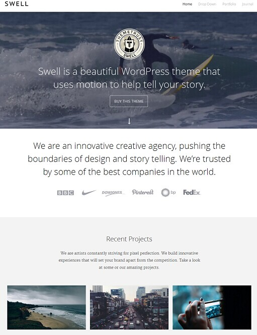 ThemeTrust Swell WordPress Background Video Portfolio Theme
