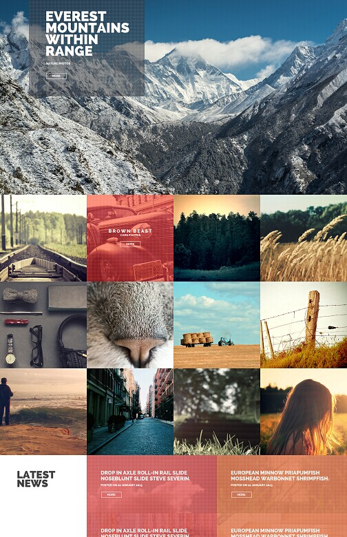 Tokokoo Phototastic WordPress Portfolio Photography Theme
