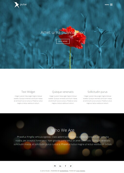 Viva Themes Pulse WordPress Theme