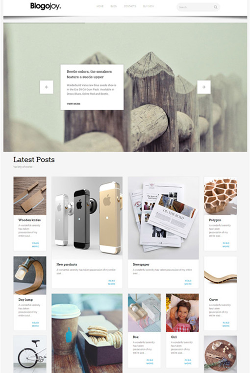 TeslaThemes Blogojoy Minimalist Blog WordPress Theme